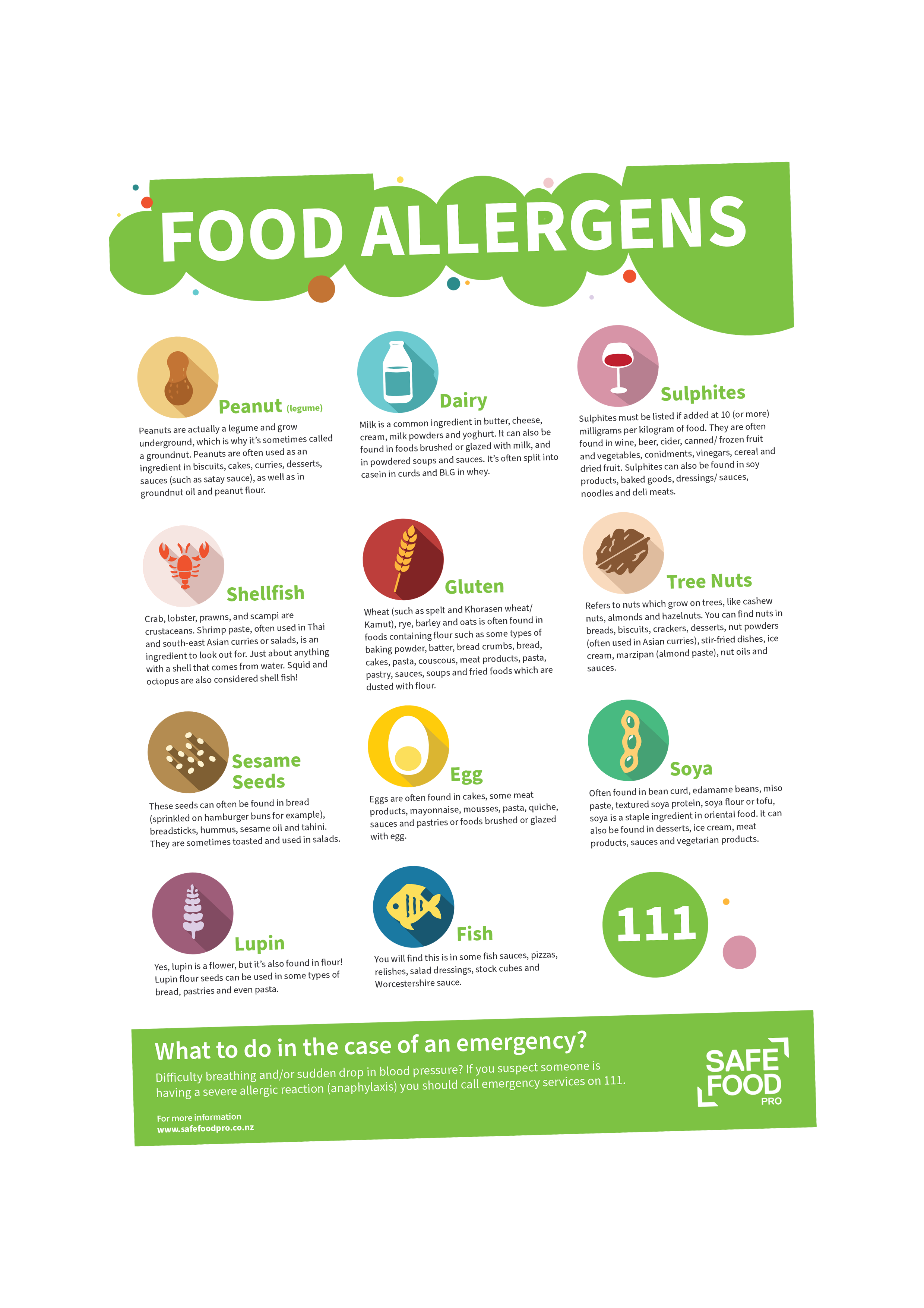 A4 Allergens Poster